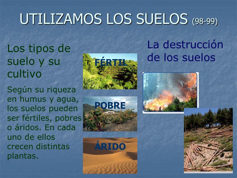 UTILIZAMOS LOS SUELOS (98-99) Los tipos de suelo y su cultivo Según su riqueza en humus y agua, los suelos pueden ser fértiles, pobres o áridos. En ca