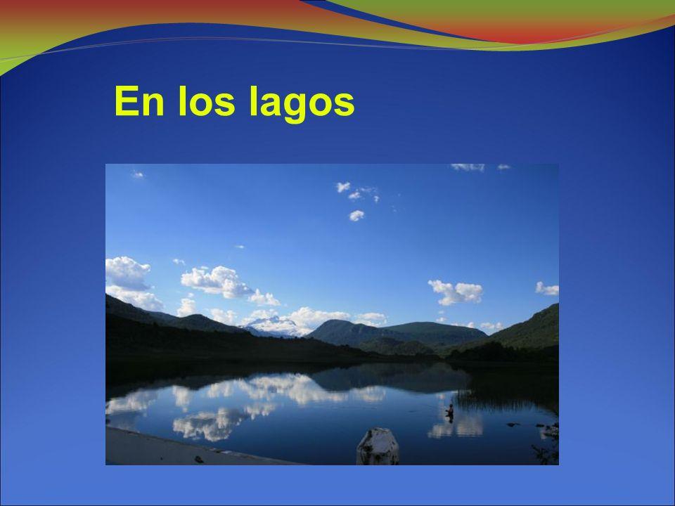 En los lagos