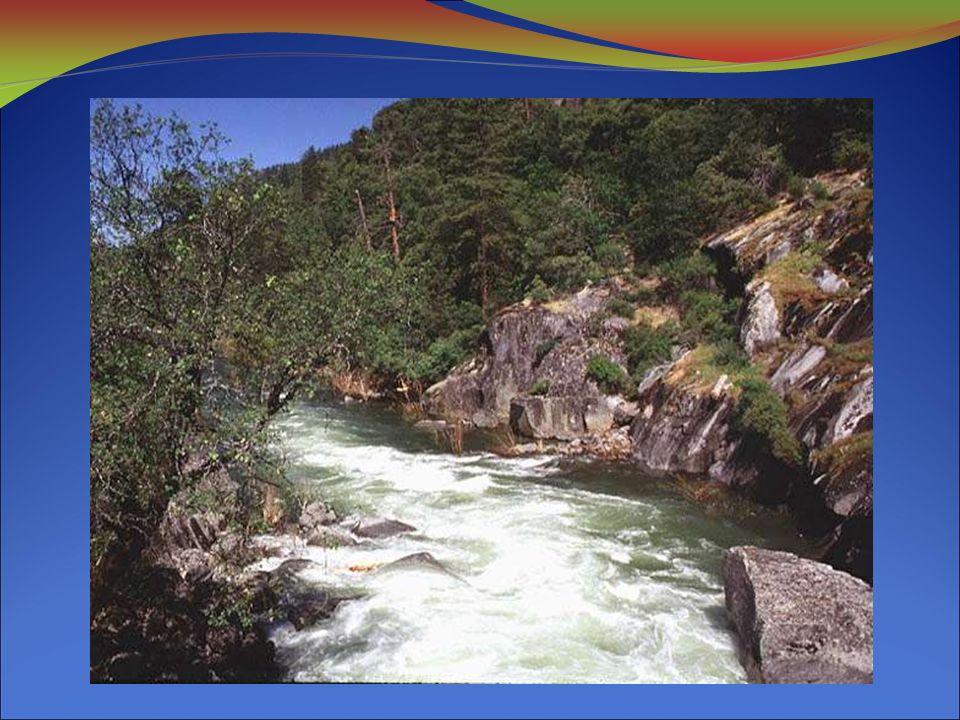 El agua de los océanos, mares, rios, lagos, pantanos se evapora.
