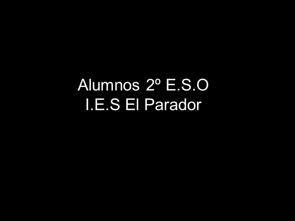 Alumnos 2º E.S.O I.E.S El Parador