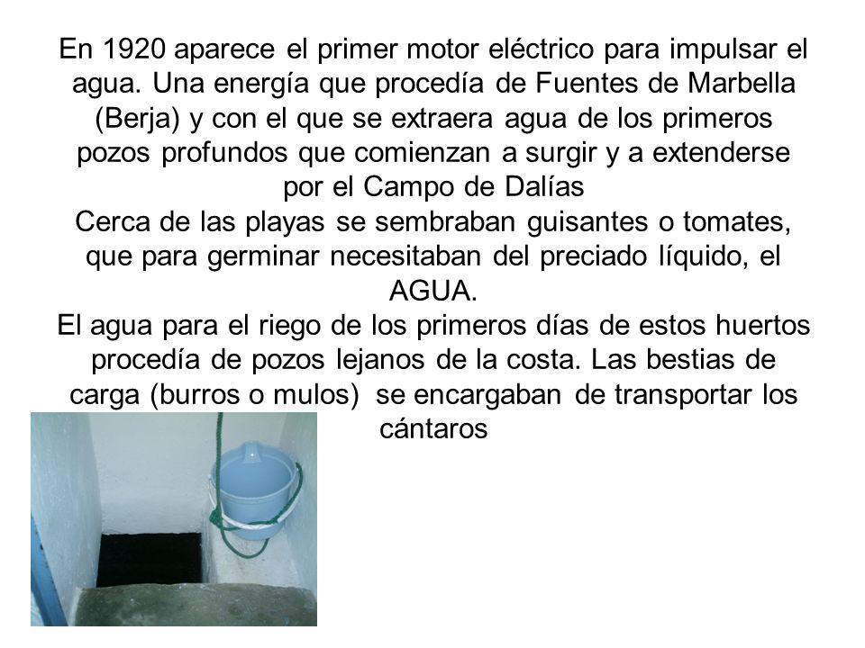 En 1920 aparece el primer motor eléctrico para impulsar el agua. Una energía que procedía de Fuentes de Marbella (Berja) y con el que se extraera agua