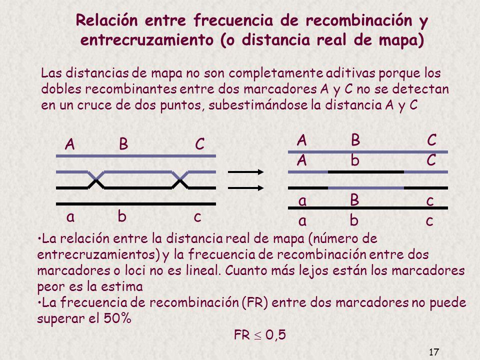 16 Las distancias de mapa no son completamente aditivas A BC FR = xFR = y A C FR < x + y bprc 19,55,9 23,7 25,4 Distancia experimento dos puntos b-c L
