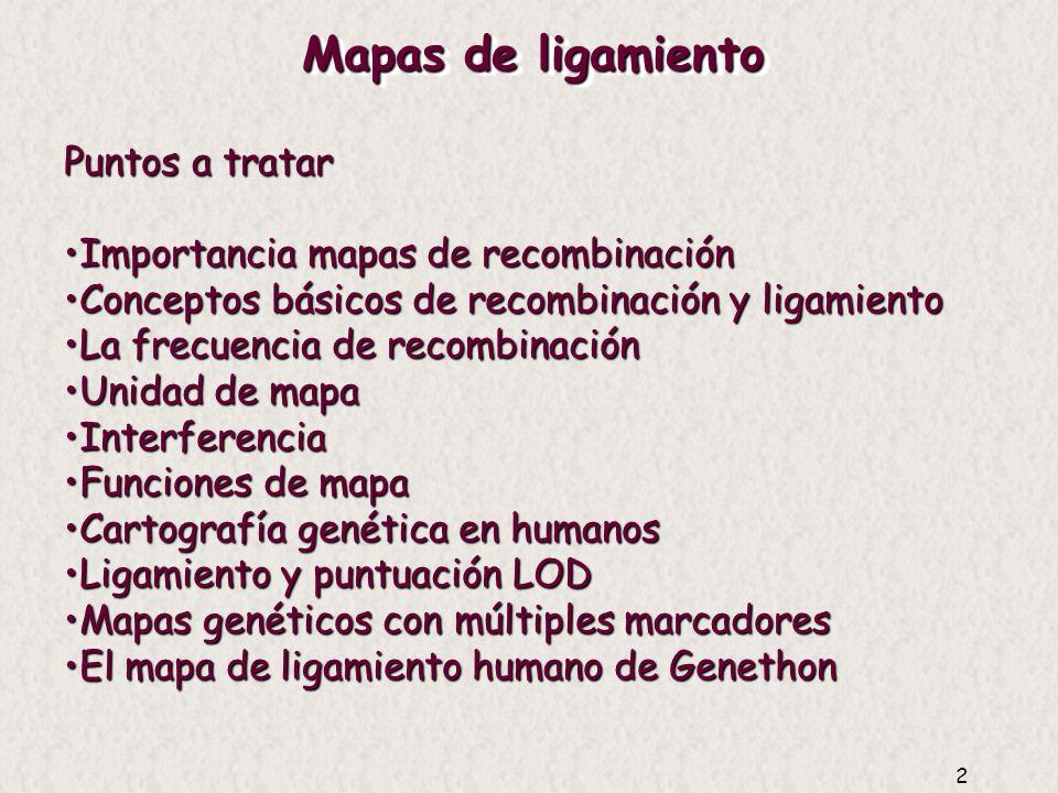 2 Puntos a tratar Importancia mapas de recombinaciónImportancia mapas de recombinación Conceptos básicos de recombinación y ligamientoConceptos básicos de recombinación y ligamiento La frecuencia de recombinaciónLa frecuencia de recombinación Unidad de mapaUnidad de mapa InterferenciaInterferencia Funciones de mapaFunciones de mapa Cartografía genética en humanosCartografía genética en humanos Ligamiento y puntuación LODLigamiento y puntuación LOD Mapas genéticos con múltiples marcadoresMapas genéticos con múltiples marcadores El mapa de ligamiento humano de GenethonEl mapa de ligamiento humano de Genethon
