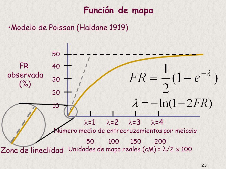 22 Es una función que permite estimar la distancia de mapa mejor que empleando solamente la frecuencia de recombinación, pues corrige los intercambios