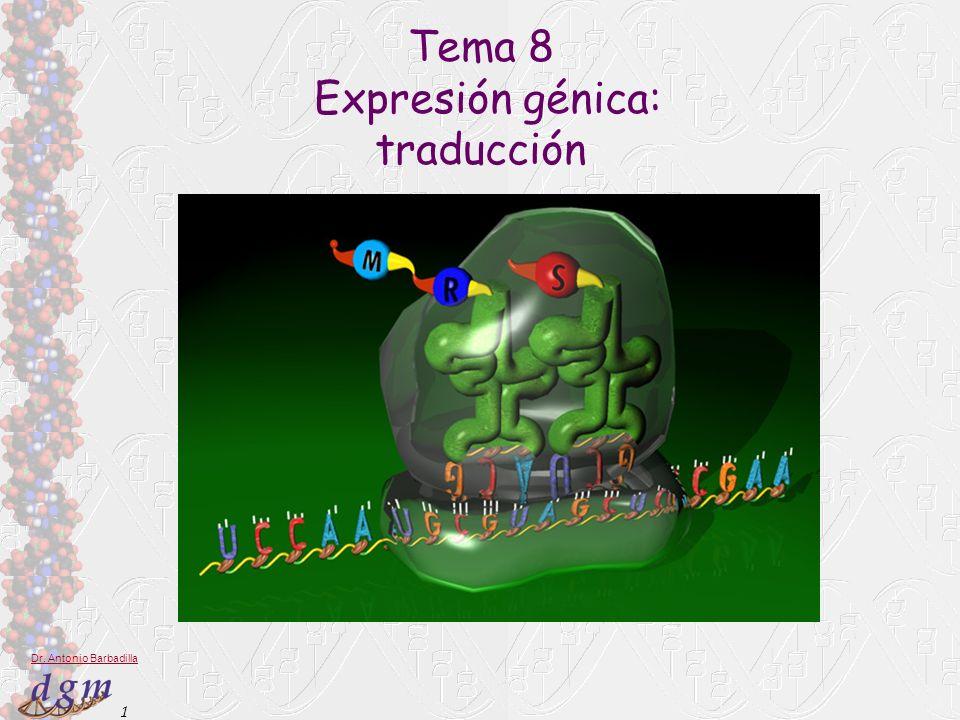 1 Dr. Antonio Barbadilla Tema 8 Expresión génica: traducción