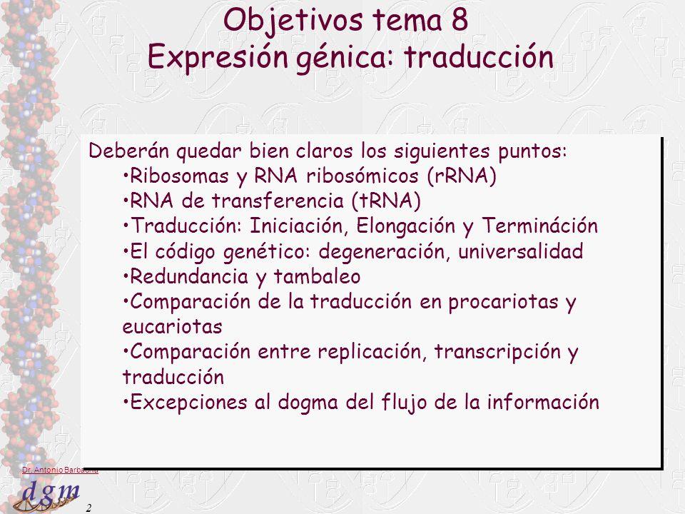 2 Dr. Antonio Barbadilla Objetivos tema 8 Expresión génica: traducción Deberán quedar bien claros los siguientes puntos: Ribosomas y RNA ribosómicos (