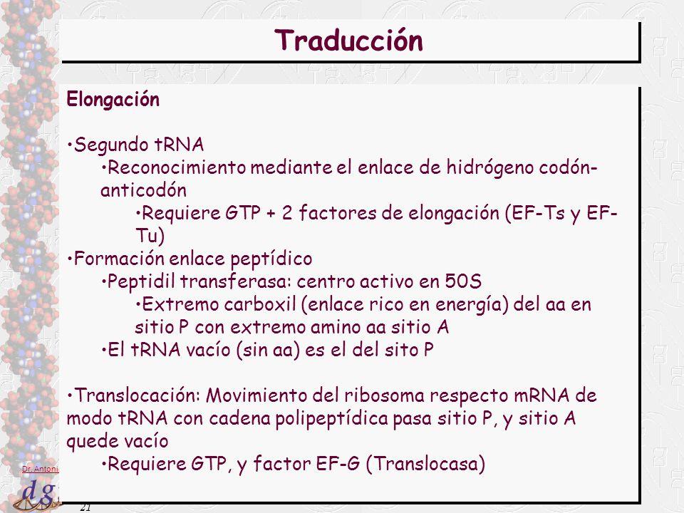 21 Dr. Antonio Barbadilla Traducción Elongación Segundo tRNA Reconocimiento mediante el enlace de hidrógeno codón- anticodón Requiere GTP + 2 factores