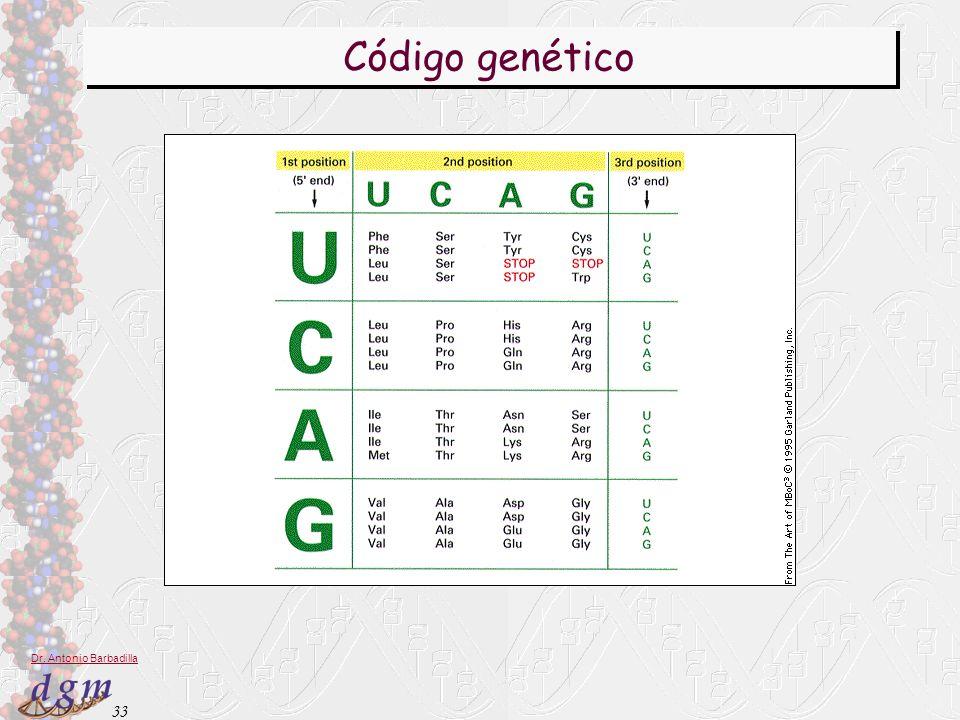 33 Dr. Antonio Barbadilla Código genético