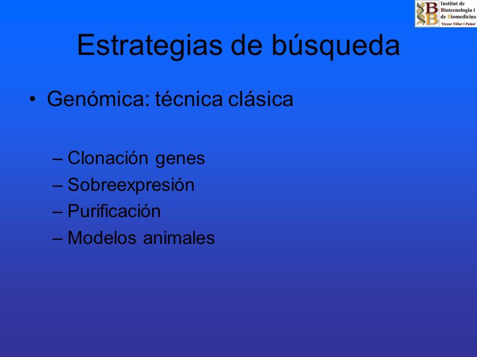 Estrategias de búsqueda Genómica: técnica clásica –Clonación genes –Sobreexpresión –Purificación –Modelos animales