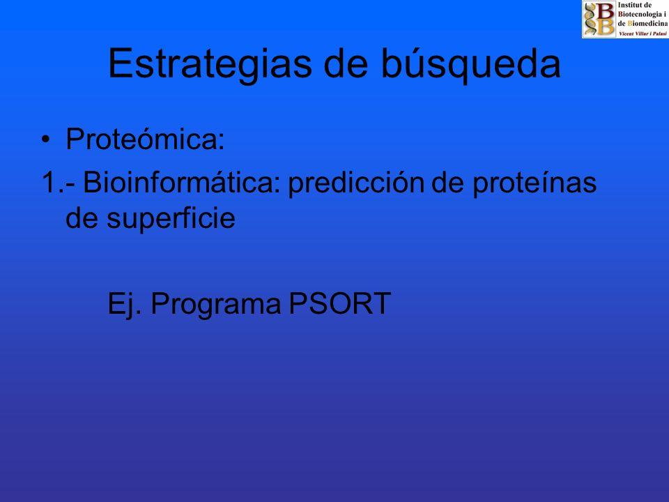 Estrategias de búsqueda Proteómica: 2.- Subproteoma de membrana: - Fracción membrana plasmática - Extracción proteínas - 2D Electroforesis - Espectrometría de masas