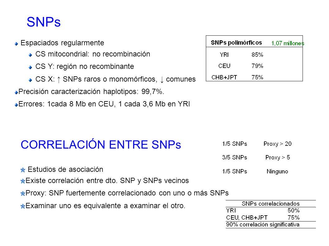 SNPs Espaciados regularmente CS mitocondrial: no recombinación CS Y: región no recombinante CS X: SNPs raros o monomórficos, comunes Precisión caracte