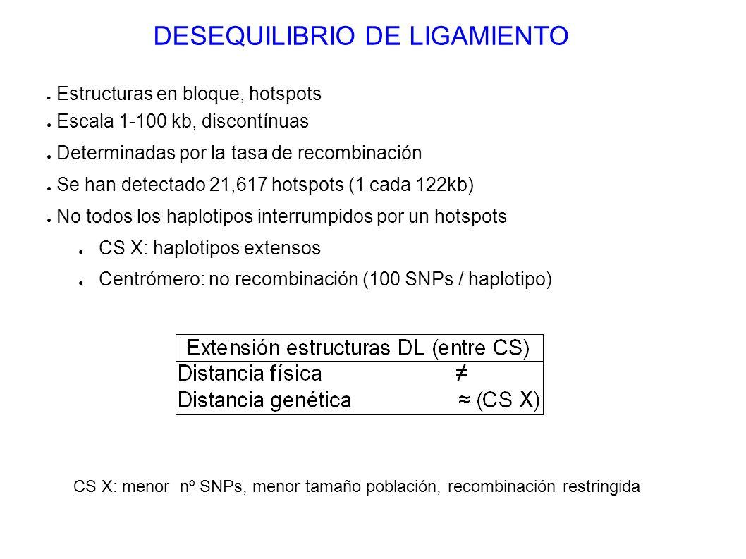 DESEQUILIBRIO DE LIGAMIENTO Estructuras en bloque, hotspots Escala 1-100 kb, discontínuas Determinadas por la tasa de recombinación Se han detectado 2