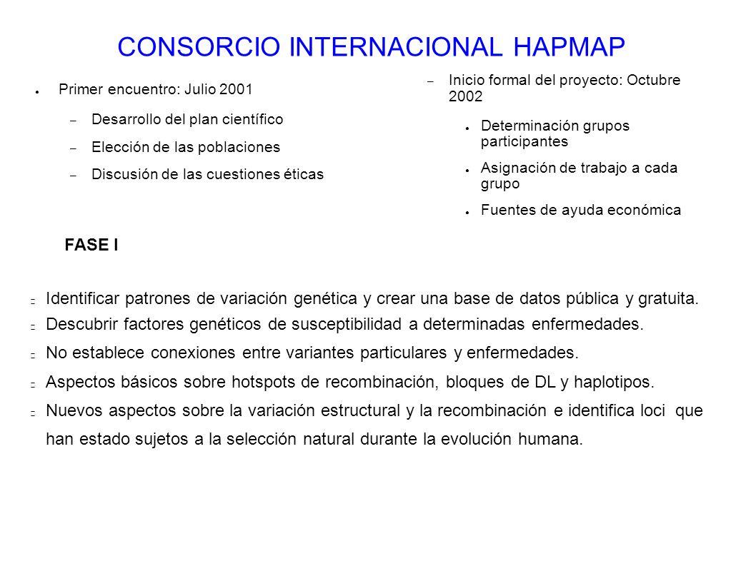 CONSORCIO INTERNACIONAL HAPMAP Primer encuentro: Julio 2001 – Desarrollo del plan científico – Elección de las poblaciones – Discusión de las cuestion