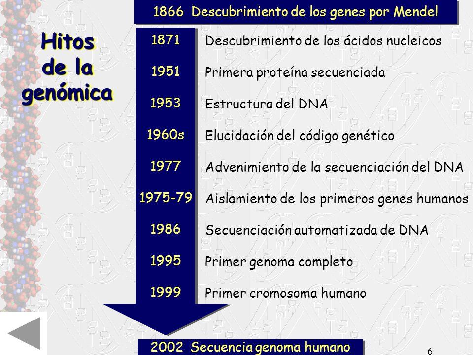 La genética en el siglo XXI5 El siglo XXI: Dominio de los procesos biológicos y genéticos fundamentales Los retos Científicos Genómica Genómica funcio