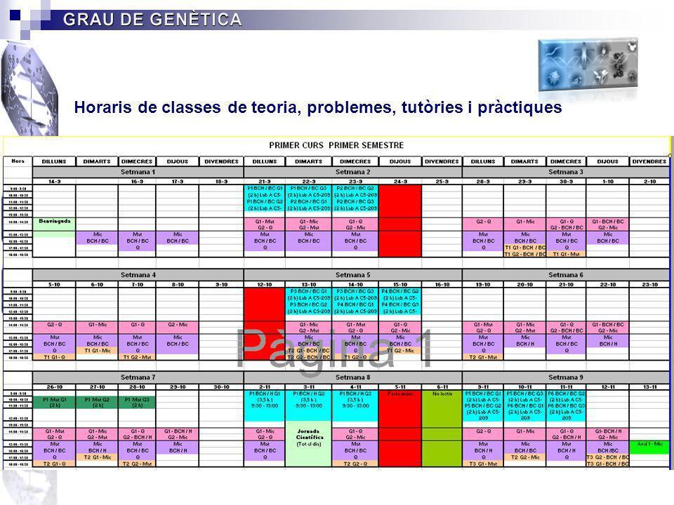 Horaris de classes de teoria, problemes, tutòries i pràctiques