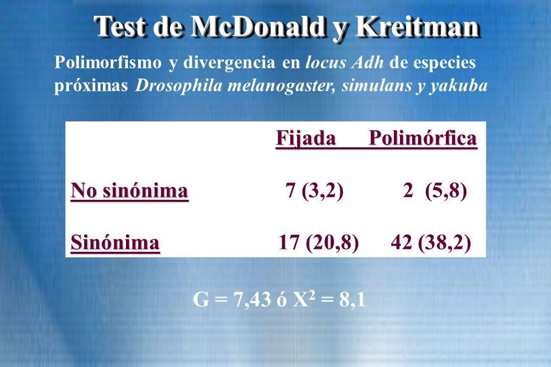 Test de McDonald y Kreitman Fijada Polimórfica No sinónima No sinónima 7 (3,2) 2 (5,8) Sinónima Sinónima 17 (20,8) 42 (38,2) Polimorfismo y divergenci