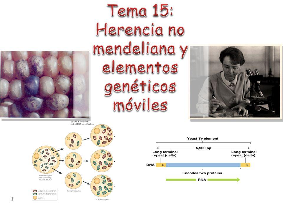Herencia citoplasmática: genomas de mitocondrias y cloroplastos Elementos genéticos transponibles: Procariotas: IS y transposones Eucariotas: Clase I: replicación vía RNA intermediario Clase II replicación vía enzima transposasa Efectos fenotípicos y genotípicos de la transposición 2