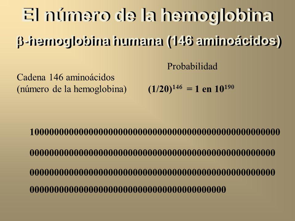-hemoglobina humana (146 aminoácidos) Val-His-Leu-Thr-Pro-Glu-Glu-Lys-Ser-Ala-Val-Thr-Ala-Leu-... Val Val-His1/20 x 1/20 = 1/400 Val-His-Leu1/20 x 1/2