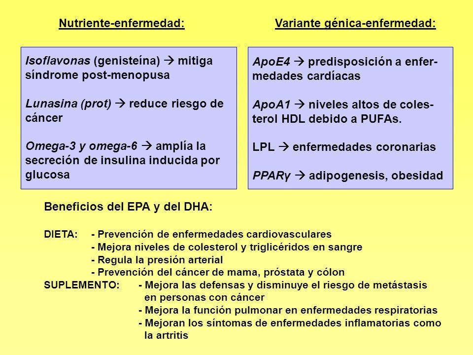 Beneficios del EPA y del DHA: DIETA: - Prevención de enfermedades cardiovasculares - Mejora niveles de colesterol y triglicéridos en sangre - Regula l