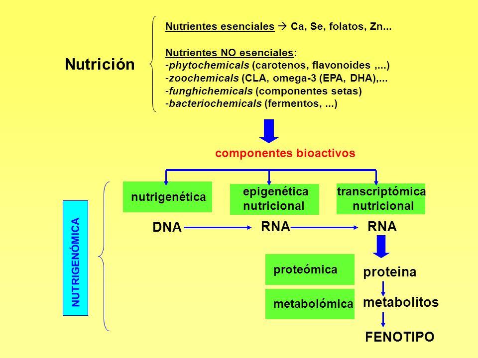 Nutrición Nutrientes esenciales Ca, Se, folatos, Zn... Nutrientes NO esenciales: -phytochemicals (carotenos, flavonoides,...) -zoochemicals (CLA, omeg