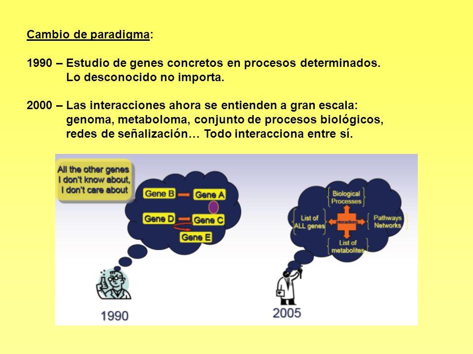 Cambio de paradigma: 1990 – Estudio de genes concretos en procesos determinados. Lo desconocido no importa. 2000 – Las interacciones ahora se entiende