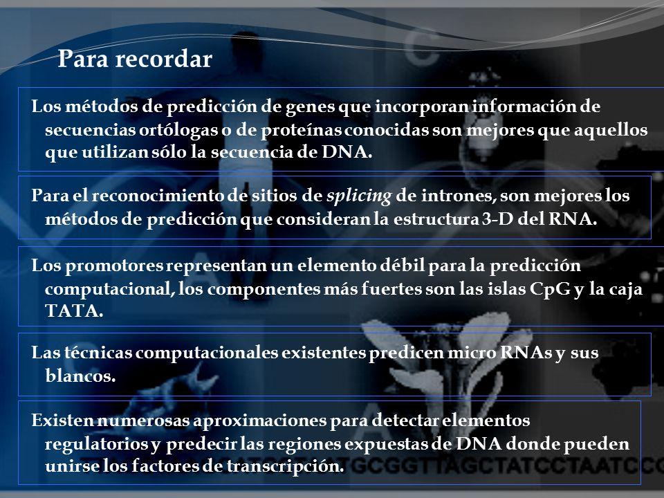 Para recordar Los métodos de predicción de genes que incorporan información de secuencias ortólogas o de proteínas conocidas son mejores que aquellos