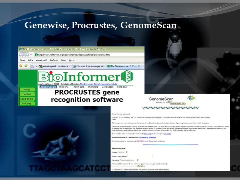 Genewise, Procrustes, GenomeScan