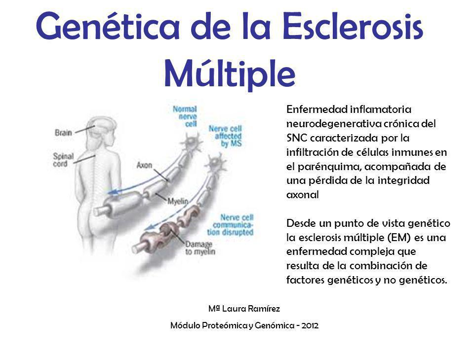 Genética de la Esclerosis Múltiple Mª Laura Ramírez Módulo Proteómica y Genómica - 2012 Enfermedad inflamatoria neurodegenerativa crónica del SNC cara