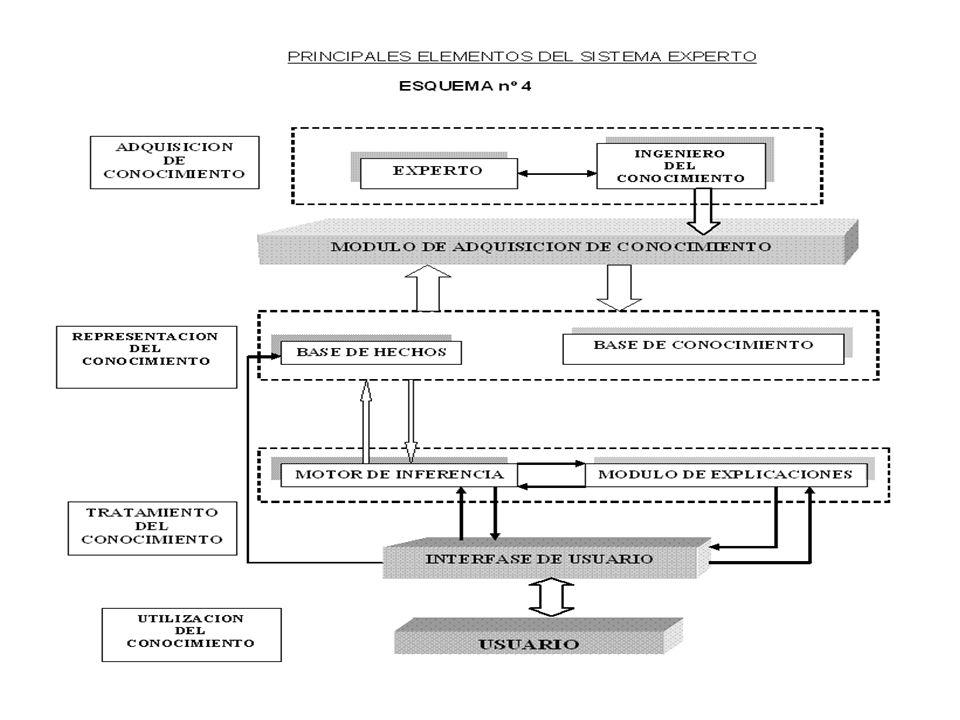 Procedimiento AlgorítmicoSistema Experto ModeloCuantitativoCuantitativo y cualitativo Relaciones precisasRelaciones imprecisas OpacoTransparente Proce