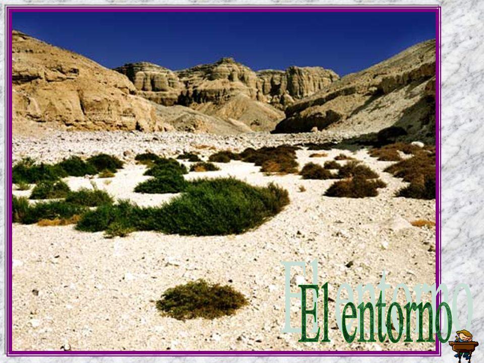 Wadi el-Hol: he