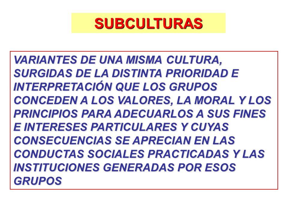 SUBCULTURAS VARIANTES DE UNA MISMA CULTURA, SURGIDAS DE LA DISTINTA PRIORIDAD E INTERPRETACIÓN QUE LOS GRUPOS CONCEDEN A LOS VALORES, LA MORAL Y LOS P