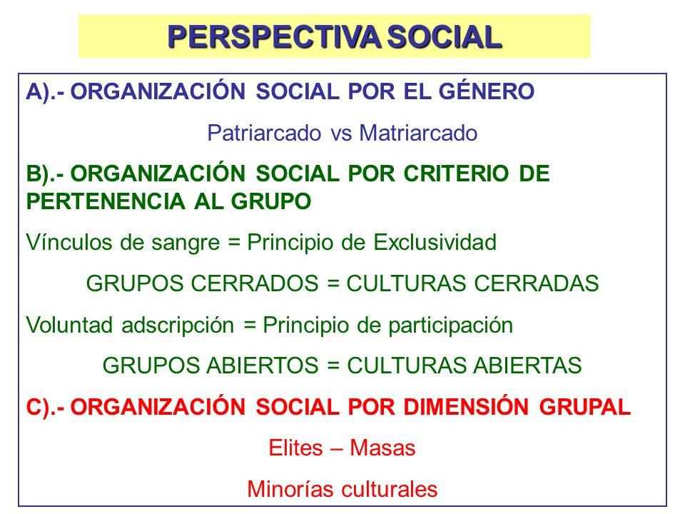 PERSPECTIVA SOCIAL A).- ORGANIZACIÓN SOCIAL POR EL GÉNERO Patriarcado vs Matriarcado B).- ORGANIZACIÓN SOCIAL POR CRITERIO DE PERTENENCIA AL GRUPO Vín