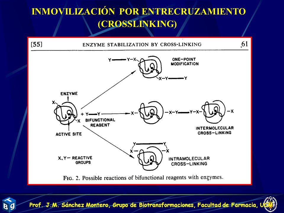 INMOVILIZACIÓN POR ENTRECRUZAMIENTO (CROSSLINKING) Prof. J.M. Sánchez Montero, Grupo de Biotransformaciones, Facultad de Farmacia, UCM