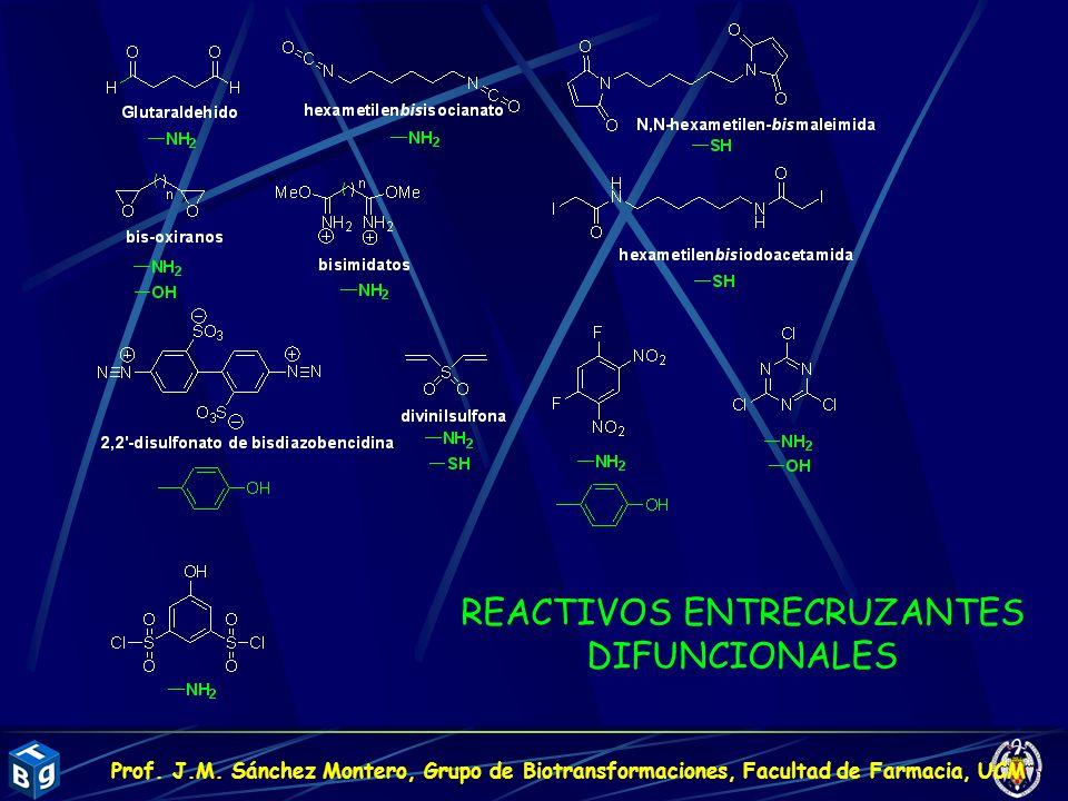 REACTIVOS ENTRECRUZANTES DIFUNCIONALES Prof. J.M. Sánchez Montero, Grupo de Biotransformaciones, Facultad de Farmacia, UCM