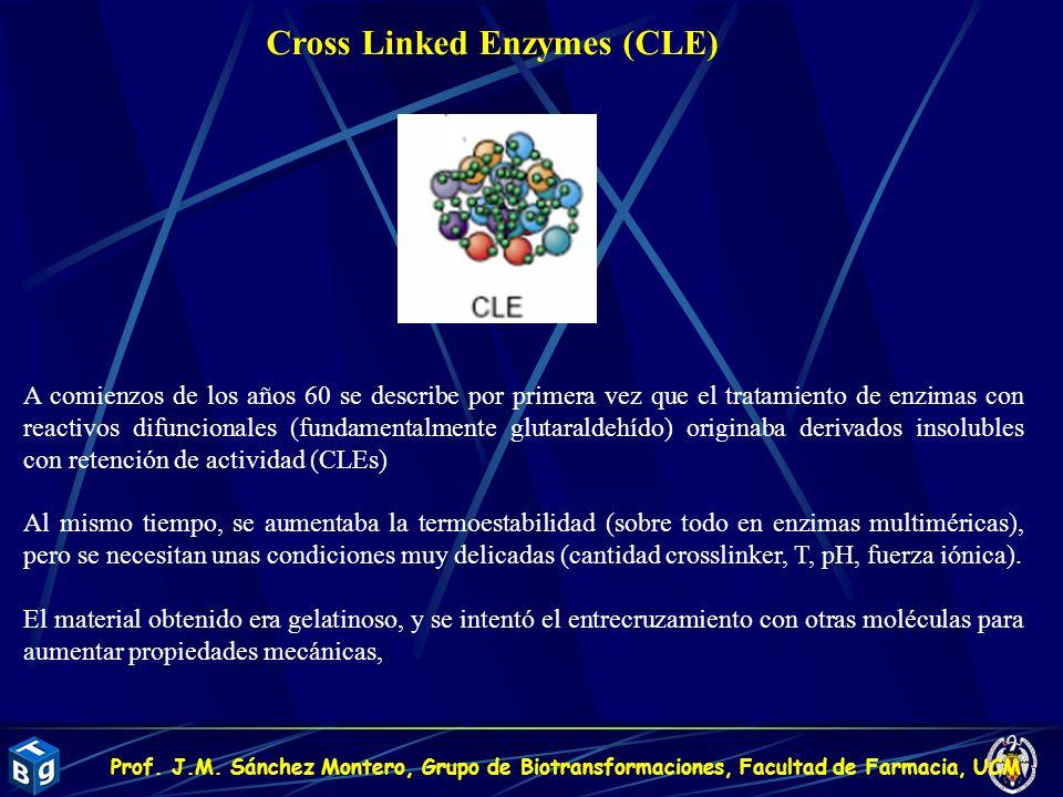 Cross Linked Enzymes (CLE) A comienzos de los años 60 se describe por primera vez que el tratamiento de enzimas con reactivos difuncionales (fundament