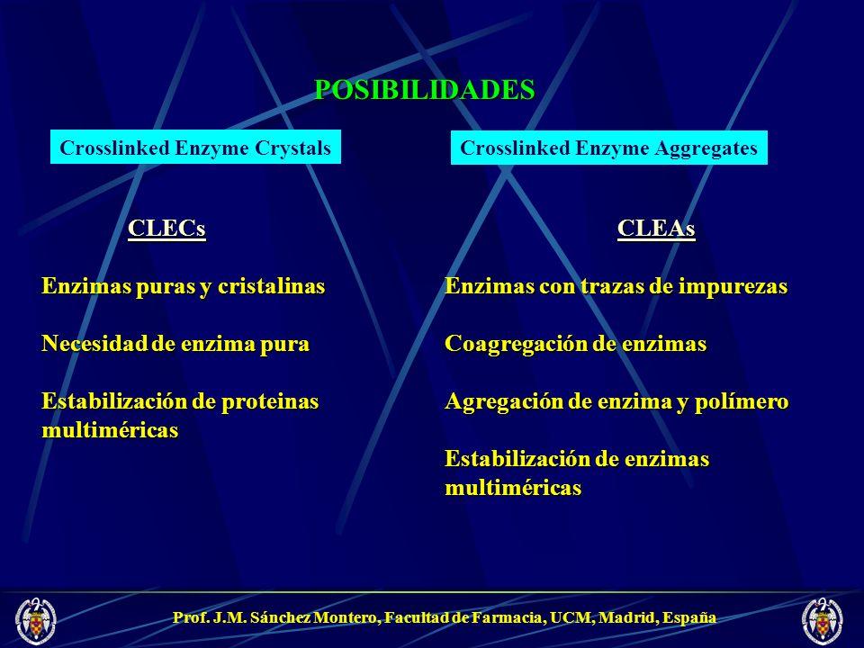 Prof. J.M. Sánchez Montero, Facultad de Farmacia, UCM, Madrid, España POSIBILIDADESCLECs Enzimas puras y cristalinas Necesidad de enzima pura Estabili
