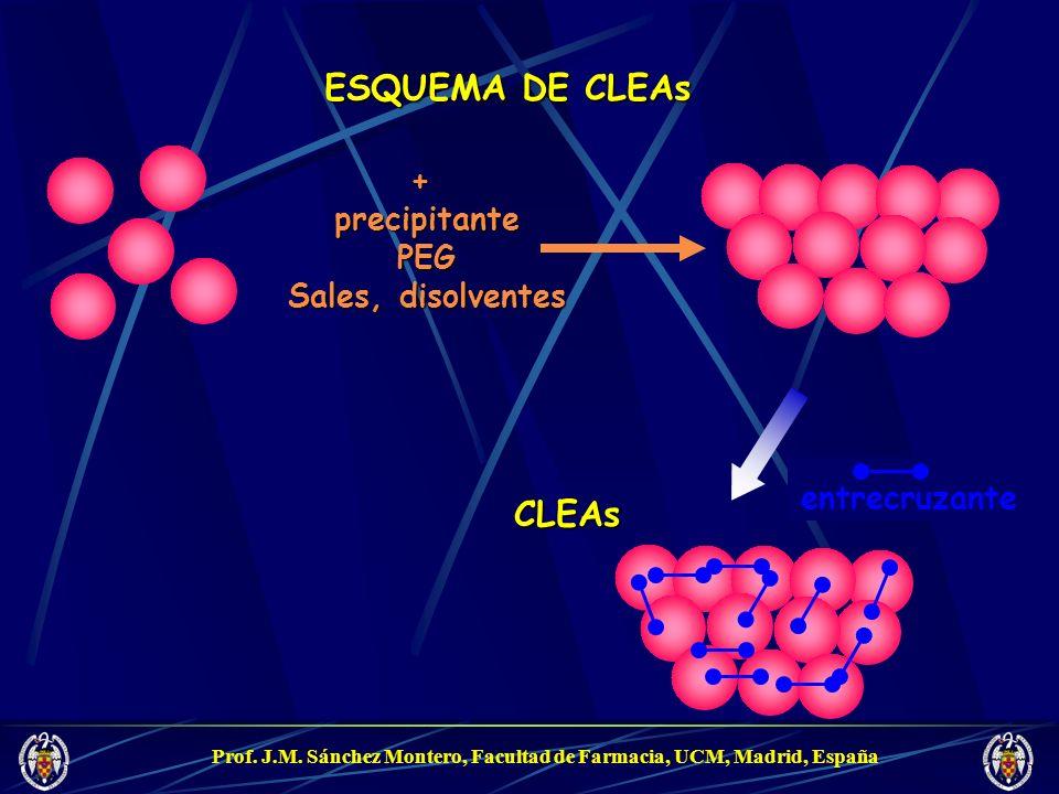 Prof. J.M. Sánchez Montero, Facultad de Farmacia, UCM, Madrid, España CLEAs ESQUEMA DE CLEAs entrecruzante +precipitantePEG Sales, disolventes