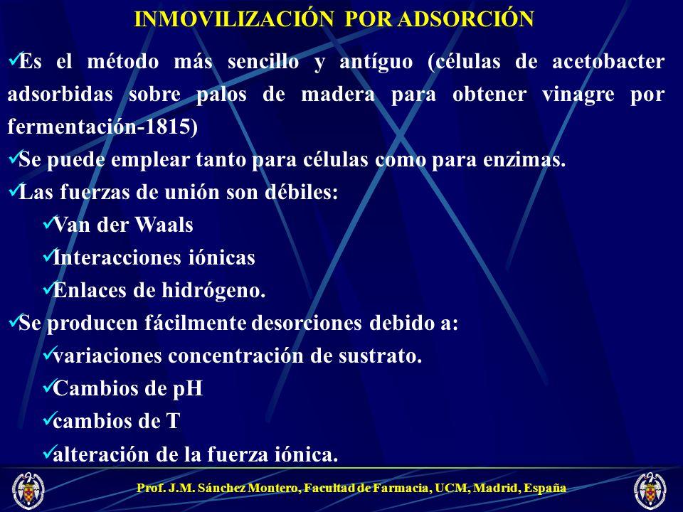 Prof. J.M. Sánchez Montero, Facultad de Farmacia, UCM, Madrid, España INMOVILIZACIÓN POR ADSORCIÓN Es el método más sencillo y antíguo (células de ace