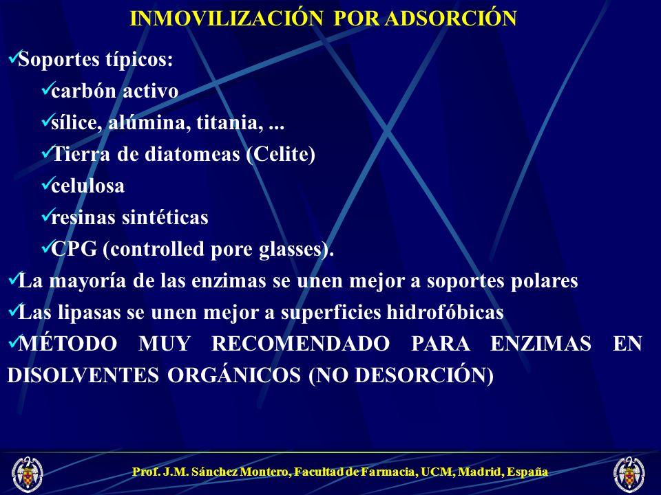 Prof. J.M. Sánchez Montero, Facultad de Farmacia, UCM, Madrid, España INMOVILIZACIÓN POR ADSORCIÓN Soportes típicos: carbón activo sílice, alúmina, ti