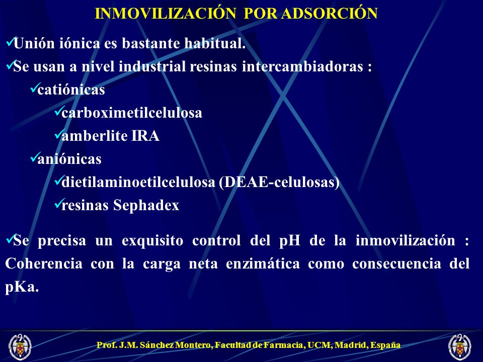 Prof. J.M. Sánchez Montero, Facultad de Farmacia, UCM, Madrid, España INMOVILIZACIÓN POR ADSORCIÓN Unión iónica es bastante habitual. Se usan a nivel