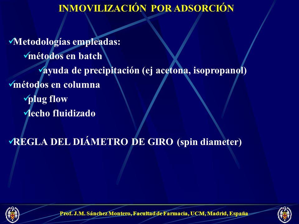 Prof. J.M. Sánchez Montero, Facultad de Farmacia, UCM, Madrid, España INMOVILIZACIÓN POR ADSORCIÓN Metodologías empleadas: métodos en batch ayuda de p