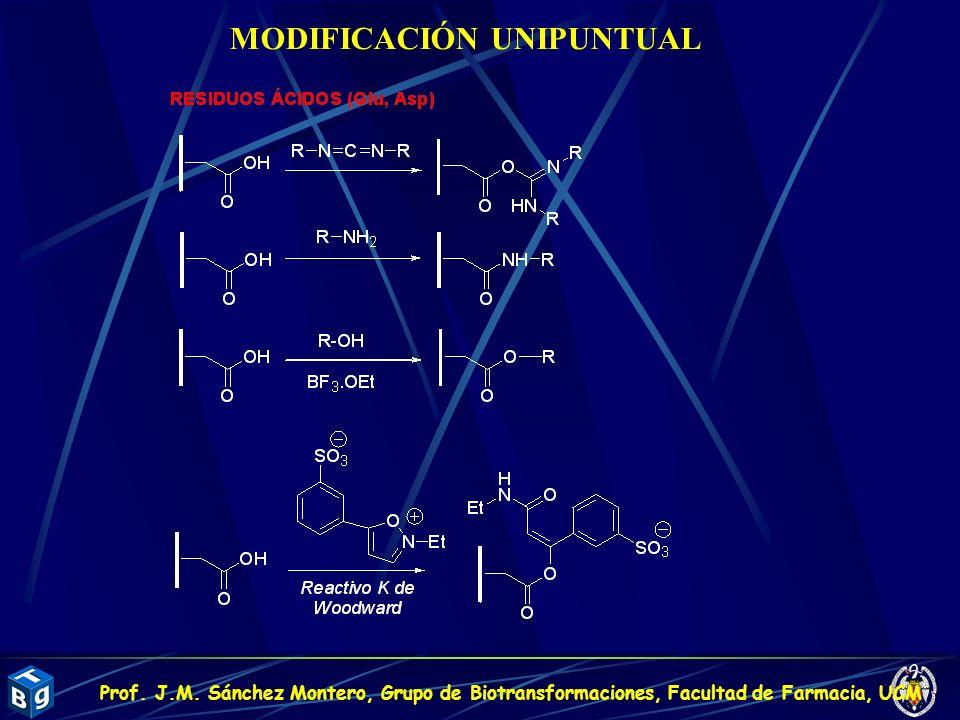 MODIFICACIÓN UNIPUNTUAL Prof. J.M. Sánchez Montero, Grupo de Biotransformaciones, Facultad de Farmacia, UCM