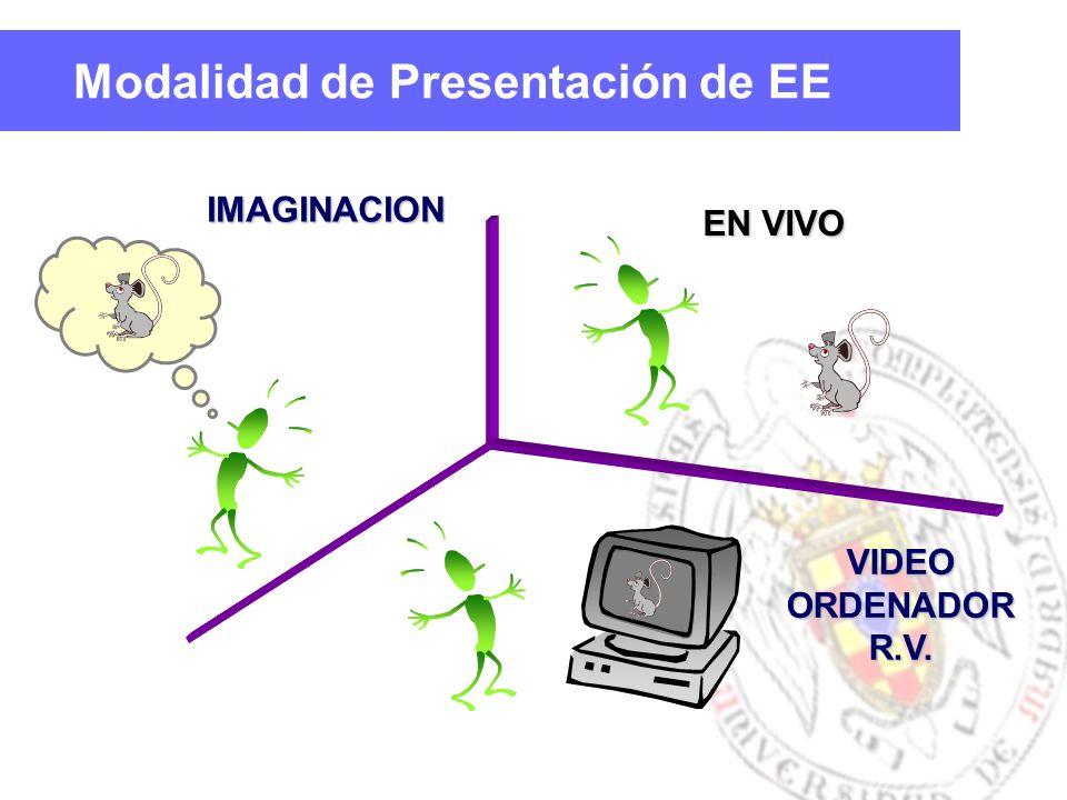Modalidad de Presentación de EEIMAGINACION EN VIVO VIDEOORDENADORR.V.
