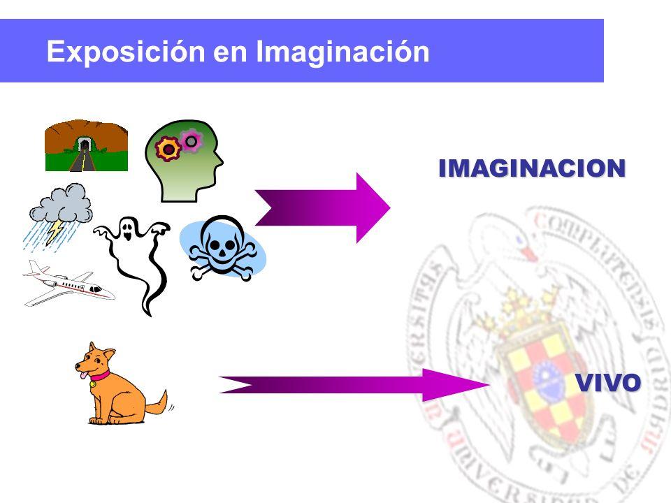 IMAGINACION VIVO Exposición en Imaginación