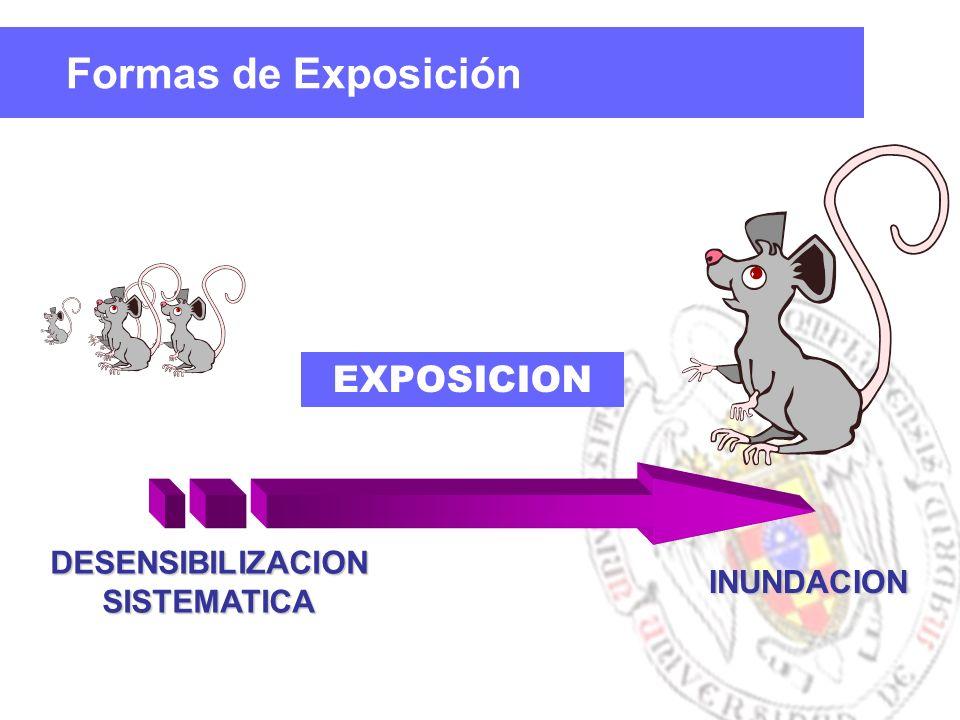 Formas de Exposición DESENSIBILIZACIONSISTEMATICA INUNDACION EXPOSICION