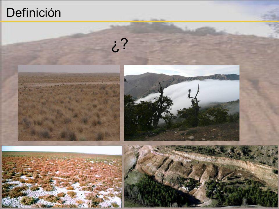 En los espacios más severamente alterados, lo esencial es la restitución de procesos Estabilidad del sustrato y control de la erosión.