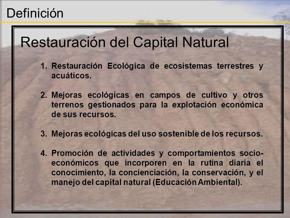 Definición Restauración del Capital Natural 1.Restauración Ecológica de ecosistemas terrestres y acuáticos. 2.Mejoras ecológicas en campos de cultivo