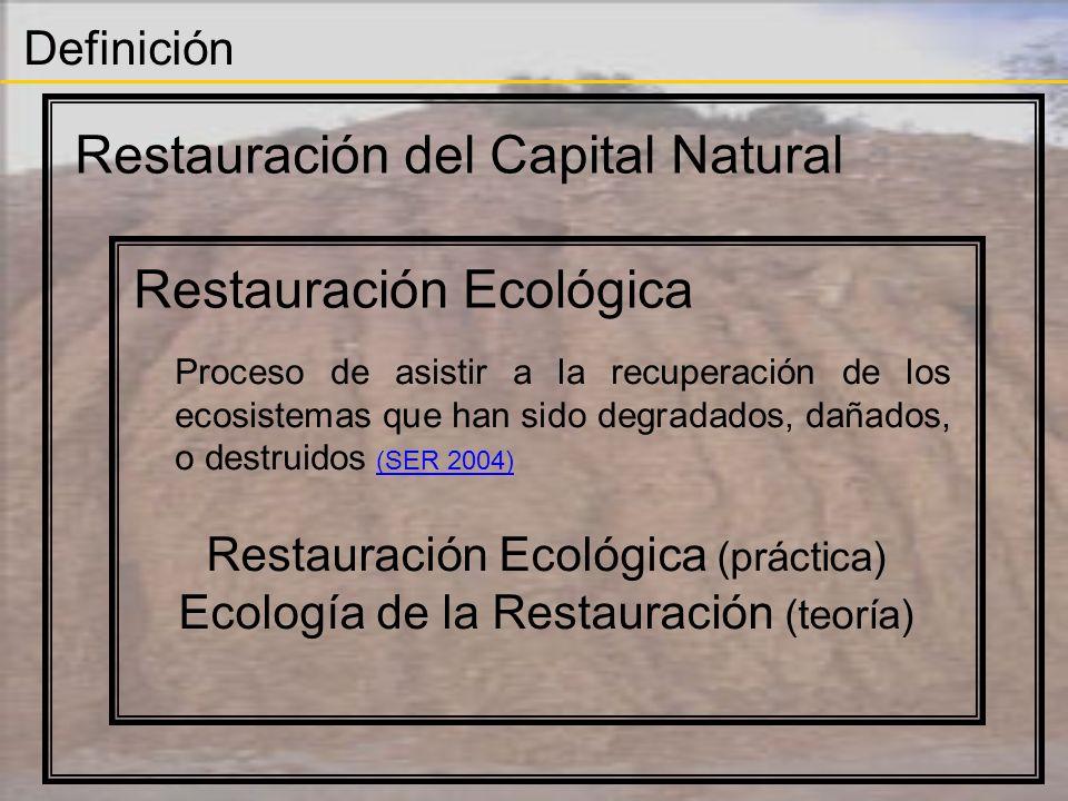 Definición Restauración del Capital Natural Restauración Ecológica Objetivos específicos Identificación y reposición de valores, bienes y servicios socialmente deseables.