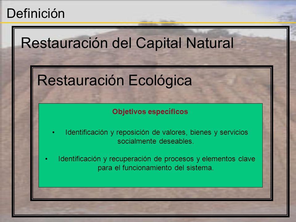 Definición Restauración del Capital Natural Restauración Ecológica Objetivos específicos Identificación y reposición de valores, bienes y servicios so