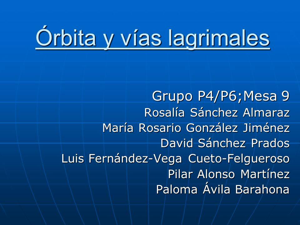 Órbita y vías lagrimales Grupo P4/P6;Mesa 9 Rosalía Sánchez Almaraz María Rosario González Jiménez David Sánchez Prados Luis Fernández-Vega Cueto-Felg